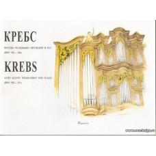 Восемь маленьких прелюдий и фуг (BWV 553-560). Для органа.